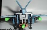 falcon-011.jpg