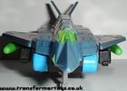 falcon-012.jpg