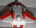 falcon-006.jpg