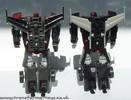 wildrider-012.jpg