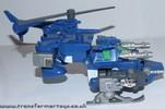 blue-bacchus-021.jpg