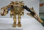bw-gold-megatron-026.jpg