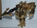 bw-gold-megatron-039.jpg