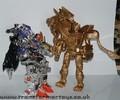 bw2-gold-lio-convoy-073.jpg