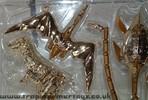 bwn-gold-magmatron-017.jpg