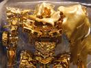 Gold Dark of the Moon Megatron