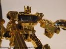 henkei-gold-convoy-024.jpg