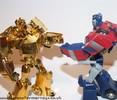 tfa-gold-deluxe-prime-028.jpg