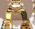 tfa-gold-deluxe-prime-044.jpg