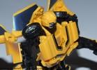 bumblebee74-025.jpg