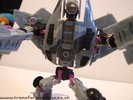 dreadwing-010.jpg