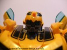 human-alliance-bumblebee-sam-019.jpg