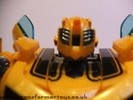 human-alliance-bumblebee-sam-020.jpg