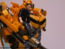 human-alliance-bumblebee-sam-021.jpg