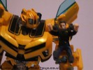 human-alliance-bumblebee-sam-023.jpg