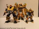 human-alliance-bumblebee-sam-031.jpg