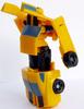 bumblebee-006.jpg