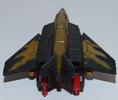 falcon-005.jpg