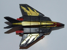 falcon-009.jpg