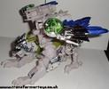 bw-tigerhawk-001.jpg