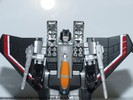 black-starscream-015.jpg