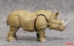 rhinox-02.jpg
